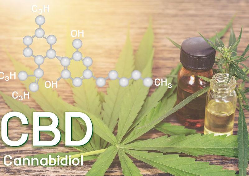 Comment se procurerdes fleurs de cannabis de qualité ?
