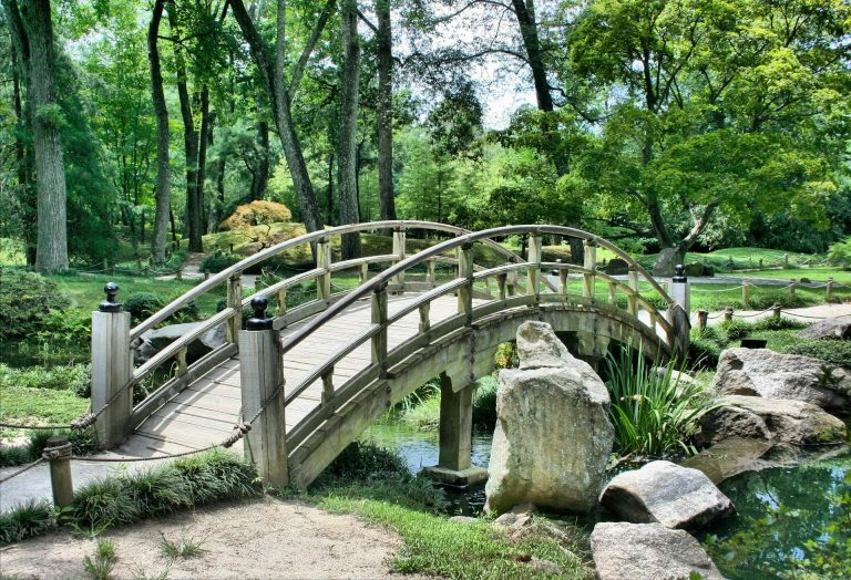 Commet créer son jardin de rêve?