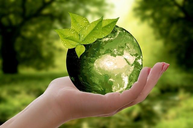 Évaluer les conséquences écologiques du digital : comment procéder ?